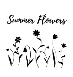 Summer flowers in black and white vector