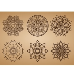 Flower Round Pattern vector image