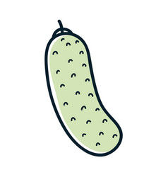 Health cucumber vegetable icon vector