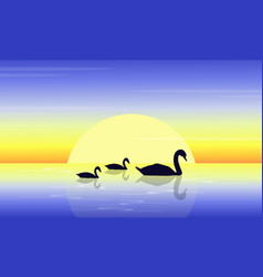 Landscape of swan on lake at sunset vector