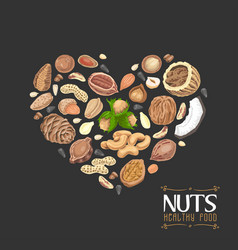 The isolated heart of nuts and seeds vector