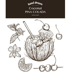 Coconut pina colada sketch vector