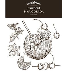 coconut pina colada sketch vector image