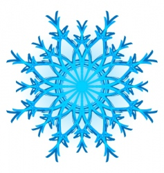 original snowflake vector image vector image