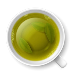Cup of green tea vector