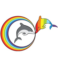 dolphins and rainbow vector image