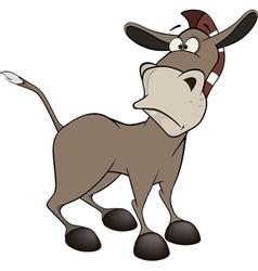 burro vector image vector image