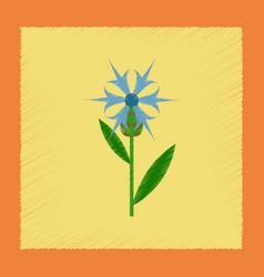 Flat shading style icon plant flower centaurea vector