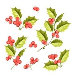 Christmas mistletoe holiday set vector image