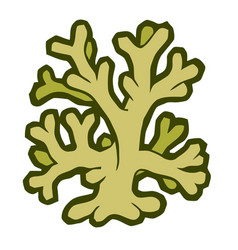 Marine coral stylized vector
