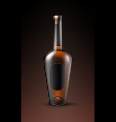 alcohol glass bottle vector image