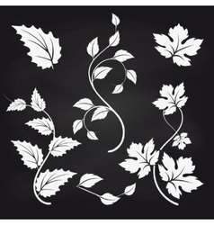 Leaves and branches on blackboard backgound vector