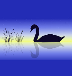 Silhouette of swan beauty nature scenery vector