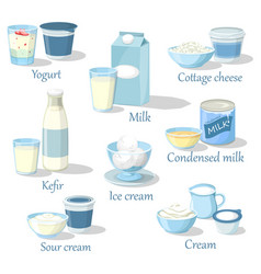 Yogurt and kefir cottage cheese and ice cream vector