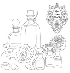 oils for spa line art vector image