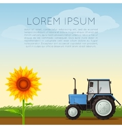 Agriculture banner with sunflower vector