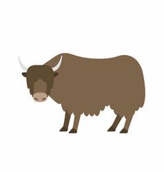 Buffalo vector