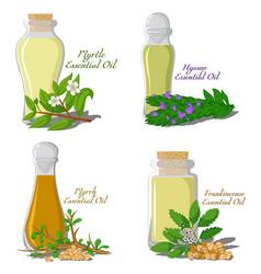 Essential oils part 3 vector
