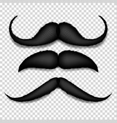 Mustache isolated black vintage moustache vector