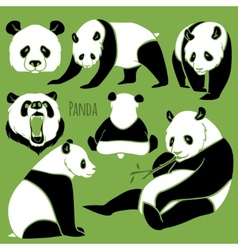 Set of panda silhouettes set vector