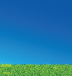 Nice green grass blue sky landscape vector