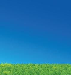Nice green grass blue sky landscape vector