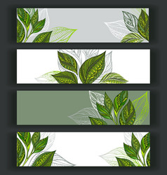Set of tea banners vector