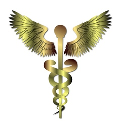 Medical caduceus symbol vector