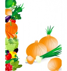 vegetables onion vector image