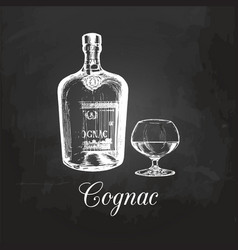 Hand sketched cognac bottle and glass vector