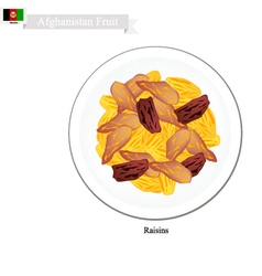 Raisins or dried grape snack in afghanistan vector
