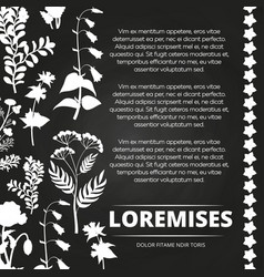 floral silhouettes chalkboard poster design vector image