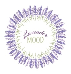 Decorative lavender frame vector