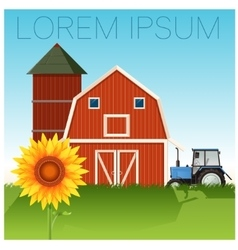 Farm banner with sunflower vector image