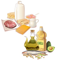 Food with fats vector image
