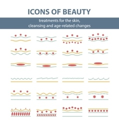 Icons with scheme of cleansing the skin vector