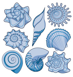 Set of colored sea shells vector