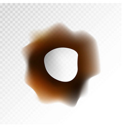 big burnt hole on transparent background isolated vector image