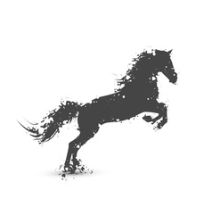 Ink splashes horse vector