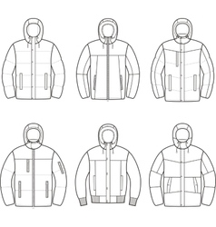 Down jacket vector