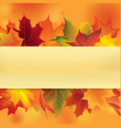 Autumn leaves frame fall maple leaf floral vector