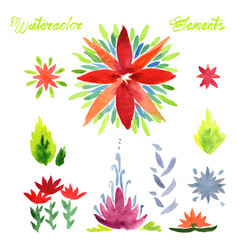 Flowers watercolor elements vector