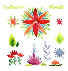 flowers watercolor elements vector image vector image