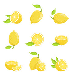 lemon with slices fresh yellow fruit in cartoon vector image vector image