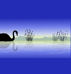 Silhouette of swan on lake style collection vector