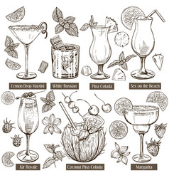 sketch set of cocktails vector image