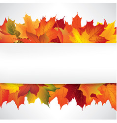 autumn leaves frame fall maple leaf floral vector image