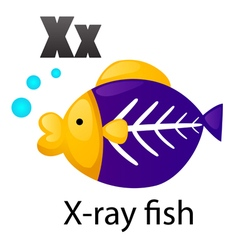 Alphabet x with x-ray fish vector