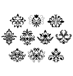 Black damask flower blossoms and patterns vector image