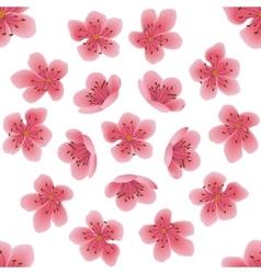 Seamless pattern with sakura flowers vector image vector image